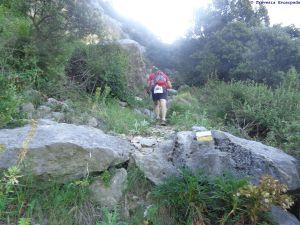 Ascenso al collado de El Santo. +900 m desnivel positivo en 4 km. Del 17.5 al 21.5
