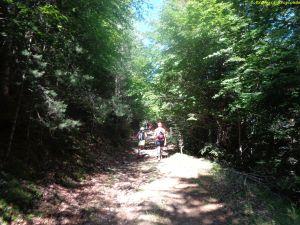 Buscando el avituallamiento de Camino las Planas. 33.5K